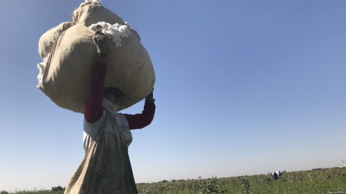 Despite Commitment and Efforts, Systematic Forced Labor in Uzbekistan's Cotton Fields was Present During the 2018 Harvest