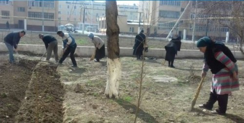 Uzbek teachers, nurses 'forced' to clean streets and harvest wheat