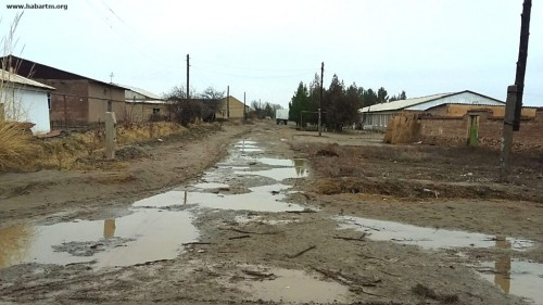 Hundreds of Villages Untouched by Turkmenistan's Rural Development Program