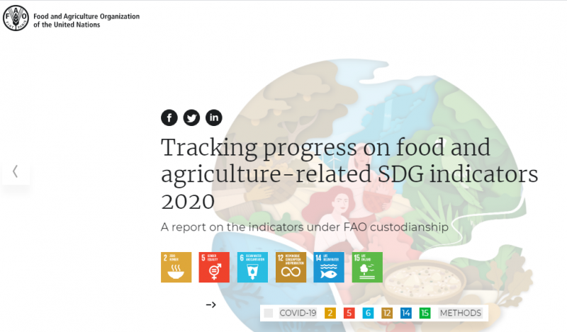 "FAO's report ""Tracking progress on food and agriculture-related SDG indicators"""